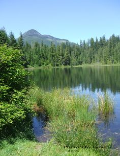Antler Lake , BC June 2015 photo by Lynette Gold River, Vancouver Island, June, Mountains, Nature, Pictures, Travel, Photos, Naturaleza