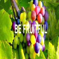 "Fruitfulness vs ""busyness"" This is a good one, ladies! By ""good"" I mean, one that we all can relate too! It's so very easy for us to fill our lives with all kinds of activities – these can be of church, of home, of school, of friends. So many things we can and are doing. But let's be careful not to confuse our ""busyness"" with our fruitfulness. Being fruitful means to be productive and excellent in what you do. It isn't draining, it doesn't wear you out and you don't have to force things to…"