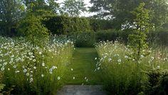 Meadow - Garden Designer Justin Spink Wiltshire Garden