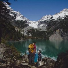 All Summer Adventures Should Include 'Camping With Dogs' - Petcha Dog Travel, Travel News, Cute Cases, Go Camping, Dog Owners, The Great Outdoors, Kayaking, Pup, Adventure