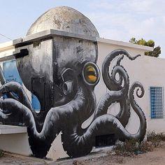 Street Art by ROA |Er-riadh, Djerba, Tunisia, August, 2014