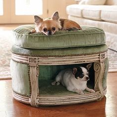 a dog bed that fits in with the rest of your house! would be great for the cats too!