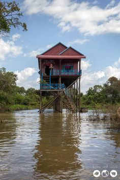 Tonle Sap Floating Village - Through Our Lens - Bobo and ChiChi - Tonle-Sap-Vert
