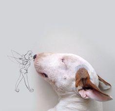 #cute dog... drawings