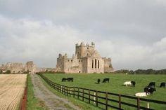 Dunbrody Abbey - Campile, Ireland Castles, Monument Valley, Trip Advisor, Ireland, Beautiful Places, Nature, Travel, Naturaleza, Viajes