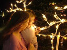 Christmas lights at Bronner's CHRISTmas Wonderland #Christmas #Bronners #lights #family
