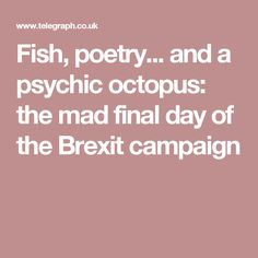 and a psychic octopus: the mad final day of the Brexit campaign Final Days, Boris Johnson, 40 Years, Kissing, Octopus, Finals, Britain, Mad, Campaign