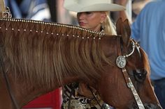 2013+western+horse+show+trends | Do your mane like this.