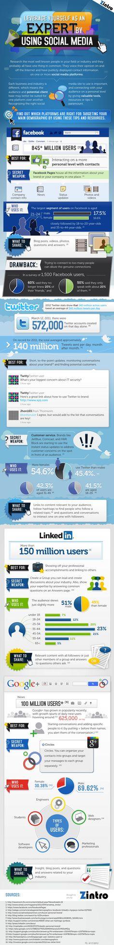 Como escoger la Redes Sociales adecuada para su negocio? Excelente infográfico que resume las cualidades, mercado objetivo y el uso que se le puede dar a las principales redes sociales: Facebook, Twitter, Linkedin y Google+