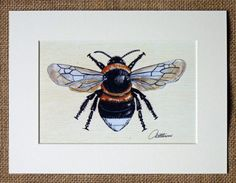 Bumble Bee Print Bumble Bee Picture Bumble Bee by Canvasbutterfly