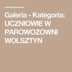 Galeria - Kategoria: UCZNIOWIE W PAROWOZOWNI WOLSZTYN