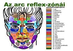 Reflexology Massage, Giza, Wellness Fitness, Health And Beauty, Colours, Superhero, Blog, Yamamoto, Pilates