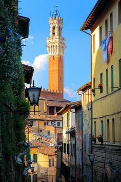 Such a beautiful city. The sun glows a different colour. Siena, Italy