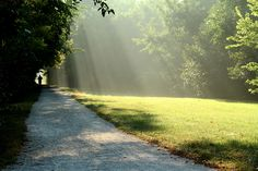 Simple, but a very serene running #trail.