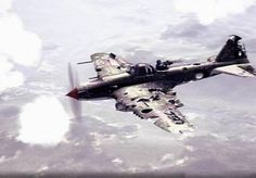 The Damaged Il-2