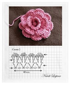 Do not miss these 34 magnificent flower patterns in crochet, with step by step tutorial. The flowers are fantastic because they - Salvabrani Crochet Puff Flower, Crochet Flower Patterns, Crochet Stitches Patterns, Crochet Flowers, Knitting Patterns, Crochet Motifs, Crochet Diagram, Crochet Chart, Accessoires Barbie
