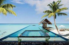 mer sea cocotier coconut