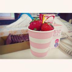 #おやつ #sweet #student #ol #ruby #html #css #javascript #sql #jQuery #programming #japan #Japon #osaka #大阪 #梅田 #오사카 #写真好きな人と繋がりたい #自由 #カメラ女子 #いちご #strowberry #苺 #草莓 #Lafraise #딸기 myおやつコーナー(oOo) ねむたーい そろそろ真面目に働かなくては(;