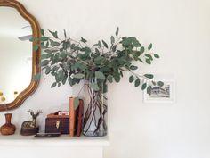 Eucalyptus branches in clear glass vase on a dresser, dresser vignette