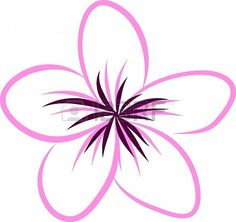 Drawing Tropical Plumeria Flowers Vector Stock Photo 21424299