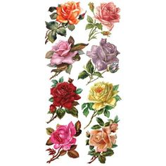 1 Sheet of Stickers Mixed Rose Blossoms