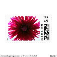 pink dahlia postage stamps