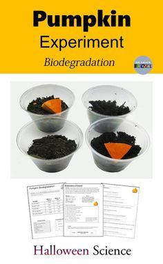 This Halloween science activity uses the scientific method and can run from two to three-weeks. The biodegradation of pumpkins is examined in this pumpkin science experiment using an inquiry approach. Small pieces of pumpkin are exposed to different environmental conditions to determine the effect on their decomposition.