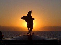 Sundown in Puerto Vallarta. Love this place!