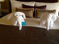 The results of towel art training, The Leela, Mumbai Mumbai, Toddler Bed, Towel, Training, Furniture, Home Decor, Art, Child Bed, Art Background