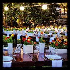 Centerpieces with wheat grass and ranunculus Centerpieces, Table Decorations, Auction Ideas, Wheat Grass, Irish Wedding, Simple Flowers, Ranunculus, Flower Arrangements, Party Ideas