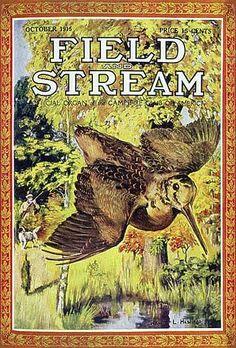 Field & Stream Cover Gallery: 43 Hunting Classics, From 1899 to 1928 Hunting Magazines, Fishing Magazines, Old Magazines, Tarzan, Outdoor Life Magazine, Wild Bull, Hunting Art, Magazine Art, Magazine Covers