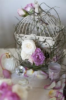 http://www.hotfrog.com.au/companies/To-Embellish-Event-Styling-Decor