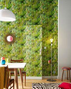 jungle urbaine un mini jardin dans la maison terraria salons and display. Black Bedroom Furniture Sets. Home Design Ideas