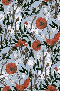Colorfull Wallpaper, Flower Wallpaper, Pattern Wallpaper, Wallpaper Backgrounds, Botanical Illustration, Botanical Prints, Illustration Art, Floral Prints, Aesthetic Iphone Wallpaper