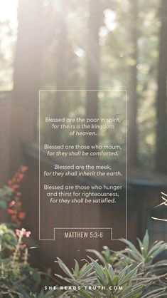 Day 7 of The Beatitudes reading plan from She Reads Truth ~ Weekly Truth ~ Today's Text: Matthew 5:3-6 [...]