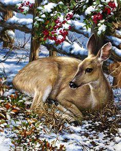 winterkerst/lief | ##Mia's Paradijs##