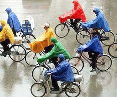 Colourful in The Rain