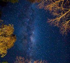 http://earthsky.org/human-world/earthsky-22-galaxies-near-and-far
