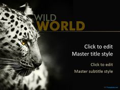 Free Leopard PowerPoint template background with dark background color and Leopard picture #PowerPoint #backgrounds #theme