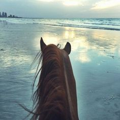 Kaitlyn ride Milky Way on the beach, she spooked and reared a little bit but that's ok