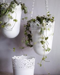 Hanging Pot Plants -- Skurar hanging planter, available from IKEA, www.ikea.com/au