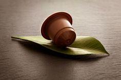 Nutriguia.com Guía de Nutrición, Cocina, Salud y Lifestyle se interesa a café ético.