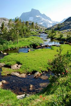 Meadow stream near Thousand Island Lake and Banner Peak, Ritter Range of California's Sierra Nevada by Talo66