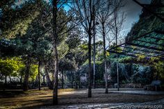 A Park by my House | Flickr - Photo Sharing!