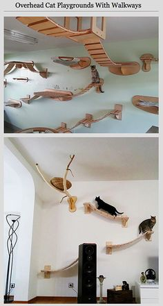 20 Ultra Creative Furniture Designs For Geeky Animal Lovers   TechEBlog.  The Overhead Cat Playground