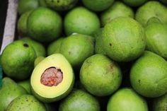 An avocado is a unique fruit with an amazing range of health benefits. Find out all about the amazing health benefits of avocados right here. Face Mask For Pimples, Pimples Under The Skin, Under Eye Wrinkles, How To Clear Pimples, How To Cure Pimples, Under Eye Wrinkle Cream, Anti Pickel Creme, Le Kale, Hair Growth