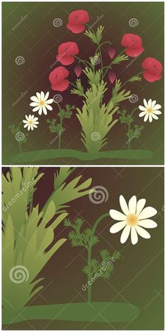 Illustration about Poppy flowers and chamomile on a green background. Illustration of bloom, decoration, botany - 51910970 Poppy Flowers, Mothersday Cards, Green Backgrounds, Botany, Vector Art, Poppies, Backdrops, Illustration Art, Bloom
