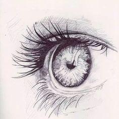 你是我的眼