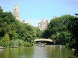 Central Park em domingo ensolarado!
