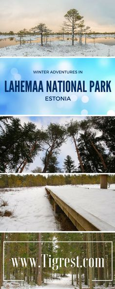 Lahemaa National Park is great at any time of the year. Winter is a great time to explore the untouched beauty and experience the nature!